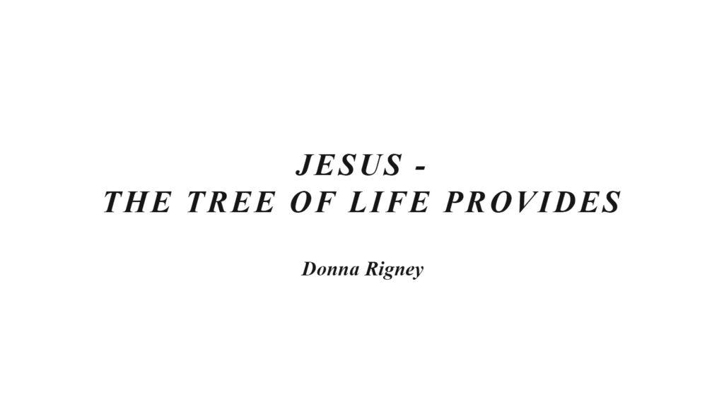 Jesus – The Tree Of Life Provides